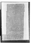 view Sar Mashhad (Iran): Middle Persian Inscription of the High Priest Kartir: Photograph of Paper Squeezes [graphic] digital asset number 1