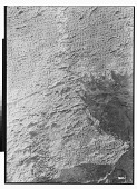 view Sar Mashhad (Iran): Middle Persian Inscription of the High Priest Kartir [graphic] digital asset number 1