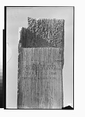 view Excavation of Pasargadae (Iran): Palace 'S', Trilingual Inscription, CMa, from Pier 1 (Inscribed Anta) [graphic] digital asset number 1