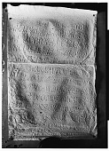 view Palmyra (Syria): View of Paper Squeeze of Bilingual Inscription in the Palmyrene Dialect of Aramaic (Syriac Script) and in Greek digital asset: Palmyra (Syria): View of Paper Squeeze of Bilingual Inscription in the Palmyrene Dialect of Aramaic (Syriac Script) and in Greek [graphic]