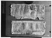 view Palmyra (Syria): View of Two Paper Squeezes of Bilingual Inscriptions in the Palmyrene Dialect of Aramaic (Syriac Script) and in Greek digital asset: Palmyra (Syria): View of Two Paper Squeezes of Bilingual Inscriptions in the Palmyrene Dialect of Aramaic (Syriac Script) and in Greek [graphic]
