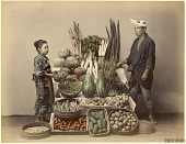 view 62. Vegetables, [1860 - ca. 1900]. [graphic] digital asset number 1
