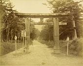 view Nara: Kasuga-taisha torii and approach, ca. 1870s. [graphic] digital asset number 1