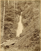 view Nikko: Somentaki falls at Takinoo Shrine, ca. 1870s digital asset number 1
