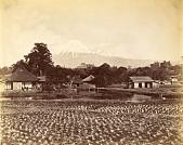 view Yoshiwara 834, [1860 - ca. 1900]. [graphic] digital asset number 1