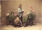 view [Flower seller], [1860 - ca. 1900]. [graphic] digital asset number 1