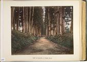 view View of Imaichi, at Nikko Road digital asset: View of Imaichi, at Nikko Road, [graphic]