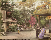 view 53A. Maple garden at Takinogawa near Tokyo, [1860 - ca. 1900]. [graphic] digital asset number 1