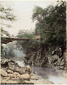 view No. 290. Bridge (made from a tree) near Chusenji, [1860 - ca. 1900]. [graphic] digital asset number 1