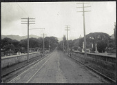 view Hawaii: Road between cemeteries. 1905 digital asset number 1