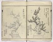 view Enchūrōryū sōka zue digital asset number 1