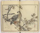 view Bairei hyakuchō gafu zokuhen digital asset number 1