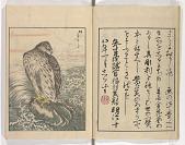 view Shūchō gafu digital asset number 1