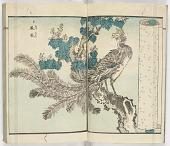 view Yanagawa gafu kachō no bu digital asset number 1