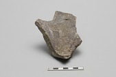 view Grating dish, wall and base, fragment digital asset number 1