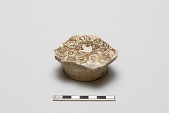 view Fragment of a bowl with bird design digital asset number 1