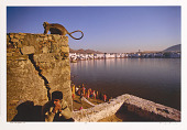 view Pushkar lake, Rajasthan digital asset number 1