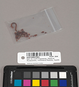 view Roll On Cuff Fragments, Medical Accessories, Command Module, Apollo 11 digital asset number 1