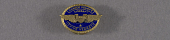 view Pin, Lapel, 5 Years Service, Chance-Vought Aircraft digital asset number 1