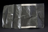 view Plastic Pouch, Biological Isolation Garment, Aldrin, Apollo 11 digital asset number 1