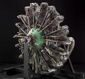 view Pratt & Whitney Wasp R-1340 SC1, Radial 9 Engine digital asset number 1