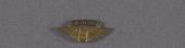 view Pin, Lapel, Post Office Department Air Mail digital asset number 1