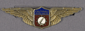 view Badge, Stewardess, Colonial Airlines digital asset number 1