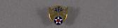 view Pin, Lapel, Air Force Association digital asset number 1