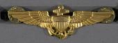 view Badge, Aviator, United States Navy digital asset number 1