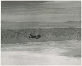 view Firebee (Q-2A). [photograph] digital asset number 1