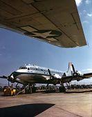 view Douglas DC-6 digital asset: Douglas DC-6