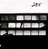 view [Contact Sheet, Roll 285] US Army Training Gliders, Elmira.  [Circa 1935-1940.] digital asset: [Contact Sheet, Roll 285] US Army Training Gliders, Elmira.  [Circa 1935-1940.]