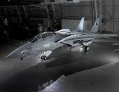 view Grumman F-14D(R) Tomcat digital asset number 1