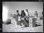 view California-Arabian Standard Oil Co. Saudi Arabia Expedition; Saudi Arabians; Camels. [photograph] digital asset number 1