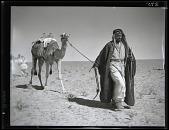 view California-Arabian Standard Oil Co. Saudi Arabia Expedition; Saudi Arabians; Bedouins; Camels. [photograph] digital asset number 1