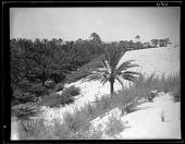view California-Arabian Standard Oil Co. Saudi Arabia Expedition; Sand dunes. [photograph] digital asset number 1