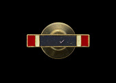 view Distinguished Service Cross medal pin issued to Lewis Broadus digital asset number 1