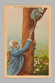 view <I>A Coon Trees a Possum in Dixieland</I> digital asset number 1