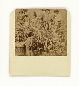 view Albumen print of men, women, and children picking cotton in South Carolina digital asset number 1