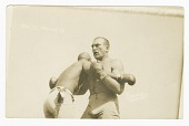 view Photographic postcard of Jack Johnson and James J. Jeffries clinching digital asset number 1