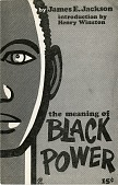 view <I>The Meaning of Black Power</I> digital asset number 1