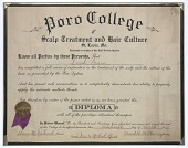 view Diploma issued to Lucille Brown from Poro College digital asset number 1