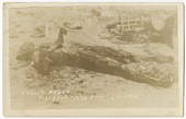 view <I>Chared Negro Killed in Tulsa Riot 6-1-1921</I> digital asset number 1