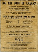 view Poster for the NAACP anti-lynching campaign digital asset number 1