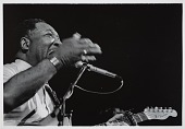 view <I>Muddy Waters, 1983</I> digital asset number 1
