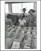 view <I>Panther Free Food Program. Children Prepare Bags of Food for Distribution at the Oakland Coliseum at the Black Panther Community Survival Conference, Oakland, California, March 1972</I> digital asset number 1