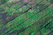 view Scanned aerial photograph of quarter ditches digital asset number 1