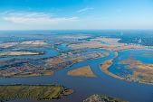 view Aerial photograph taken along the Altamaha River digital asset number 1