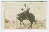 view <I>Crockett Riding Mount Toro. Salinas Rodeo, 1919</I> digital asset number 1