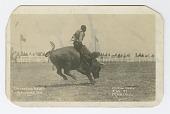 view <I>California Rodeo, Salinas, 1919</I> digital asset number 1